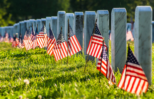 flags fly in a veteran's cemetery