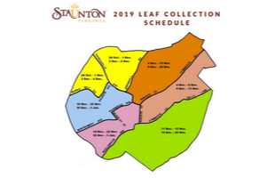 Leaf Collection 2019