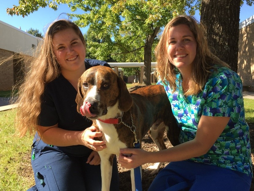 BRCC vet tech students Lydia Poland and Sydnee Baker pose with a dog on campus