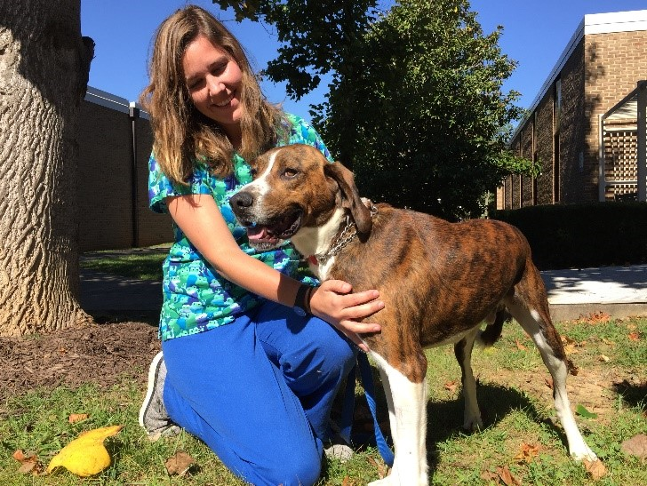 BRCC vet tech student Sydnee Baker poses with a dog on BRCC's campus.